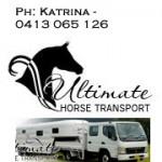 UltimateHorseTransport1