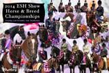 ESH Championships 2011