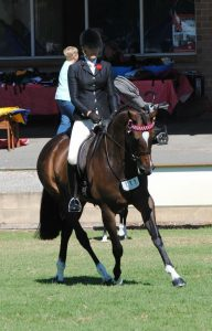 National Quality Show Hack