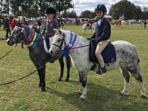 Bellingara Lolita - Welsh A pony