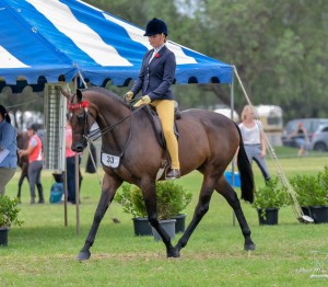 Outstanding Childs Small Open Hack