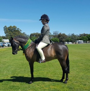 Earsley Park First Class - Small Pony