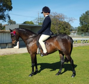 Tibooburra Georgia - Small Pony