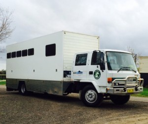 Isuzu 5/6 Horse Truck with Living.