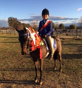 Ultimate Show, Dressage and Interschool Pony