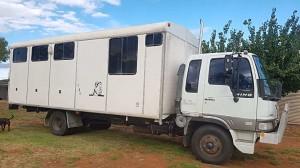 1993 Hino Hawk 4 Horse Truck