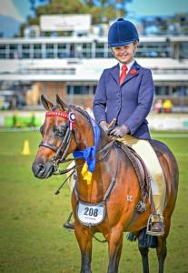 Rosedale Popeye - Royal Champion Small Pony