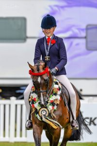 Monument Park Superstar - National Champion Small Galloway