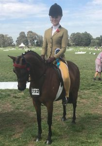 Perfect Childs Small Open Pony