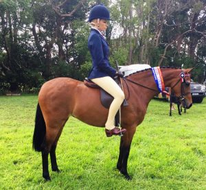 Merivale Park Duchess Royal - Medium Pony