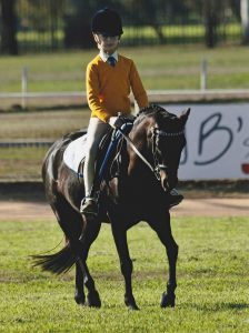 Boronia Obsession - Pony Club or Show Pony