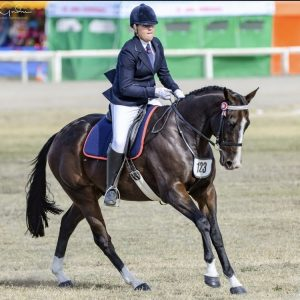 Stately - Outstanding Large Open Hack