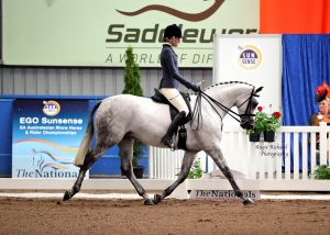 Small Show Hunter Hack - Qualified GN 2019
