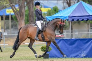 Valeview Asio - Stunning Small Hack