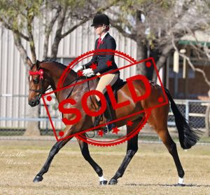 SOLD - Miss Congeniality