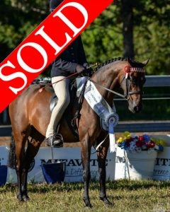 SOLD!! - Harewood Royal Doll