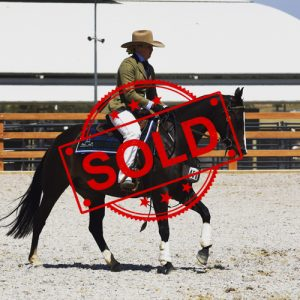 SOLD!!  Kiangatha Lady Million