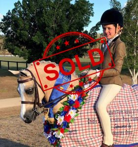 SOLD!! -  Current EA National Champion