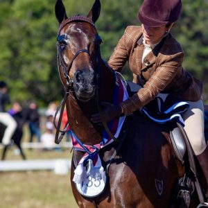 Paddington - Small Show Hunter Hack