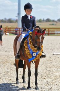 Strathford Bel Canto - Qualified GN Open & Childs.