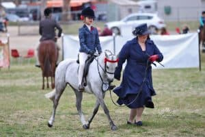 Deeplake Silver Maiden - Small Open Pony