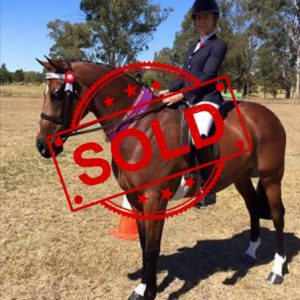 SOLD!! - Ultimate Mother's dream child's Hack