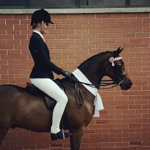 Royal Winning Large Pony - Bellevale Shine