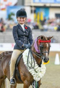 Langtree Wild Orchid - Royal Champion Open Pony