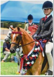 Mandaley Spring Harmony - Open Small Pony