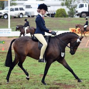 National Quality Large Pony - Bellemy Outlaw