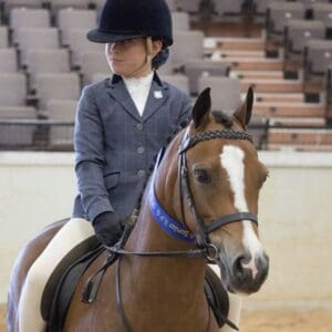 Kiah Gold Armani - Small Hunter Pony